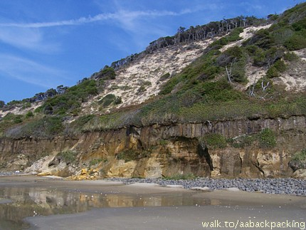 sand cliffs on the Oregon Coast in August 2006